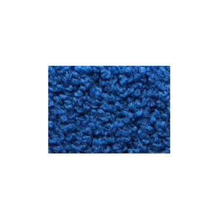 Blue Carpet Section